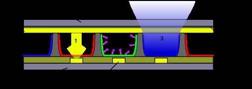 Schemat budowy ekranu plazmowego - Jak działa telewizor plazmowy?